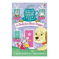 Usborne Teacup House The Twitches Meet a Puppy thumbnail