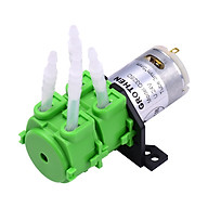 GROTHEN Peristaltic Pump Double Head DC 12V 24V Dosing Pump Micro-circulating Pump Mute Water Self-Priming Pump with thumbnail