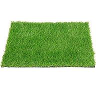 Tấm cỏ nhựa nhân tạo cao cấp dày 2cm thumbnail