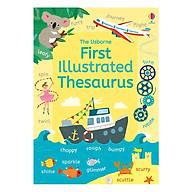 Usborne First Illustrated Thesaurus thumbnail