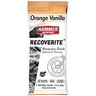Thức uống phục hồi cơ bắp- Hammer Nutrition Recoverite vị Vani Cam gói 49g thumbnail