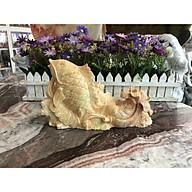 Tượng Cá chép kéo bắp cải phong thủy đá ngọc cẩm thạch vàng cà rốt - Dài 25 cm thumbnail