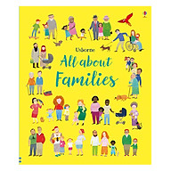 Usborne All About Families thumbnail