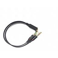 Dây cable chuyển tai nghe 3.5mm đầu cái sang 2 đầu Mic và Tai nghe đầu đực mạ vàng dài 20CM thumbnail