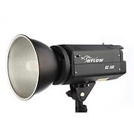 Đèn Flash Hylow 300 - Hàng Nhập Khẩu HE300 thumbnail