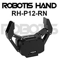ROBOTIS Hand RH-P12-RN- Hàng nhập khẩu thumbnail