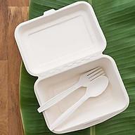 50 HỘP CƠM BÃ MÍA 450ml chuyên đựng phần ăn vừa, bún xào, thức ăn nhanh, thực phẩm nóng, dùng được trong lò vi sóng thumbnail