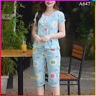 Đồ bộ mặc nhà, bộ quần áo nữ mặc nhà, đồ bộ nữ mẫu lửng 4 khuy siêu xinh thumbnail