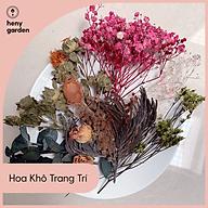 Hoa Khô Trang Trí Nến Thơm Heny Garden Nguyên Liệu Làm Nến Thơm Handmade, Tặng Mẫu Thử Tinh Dầu Với Mỗi Đơn Hàng thumbnail