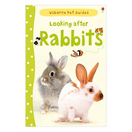 Usborne Pet Guides Looking after Rabbits thumbnail