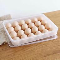 Hộp đựng trứng 24 quả cao cấp - HDTS thumbnail