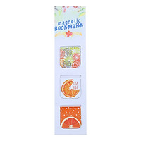 Bộ 3 Bookmark Nam Châm Kính Vạn Hoa - Summer Fruits: Orange