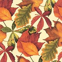 Khăn Giấy Ăn Trang Trí Bàn Tiệc Tissue Napkins Design Ti-Flair 342052 (33 x 33 cm)