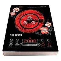 Bếp Hồng Ngoại 2 Vòng Nhiệt Kim Cương YT-20D (BHNLUOT) - Đen