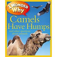 I Wonder Why Camels Have Humps