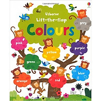 Usborne Lift-the-Flap Colours