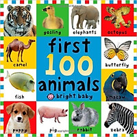 Big Board Books First 100 Animals