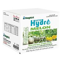 Dinh dưỡng thủy canh dưa lưới Hydro Melon (10kg)