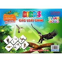 Flashcard Dạy Trẻ Theo Phương Pháp Glenn Doman - Các Loài Chim