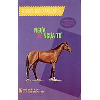 Tìm Hiểu Thế Giới Quanh Ta - Ngựa & Ngựa Tơ