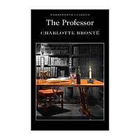 Professor (Paperback)