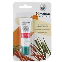 Son Dưỡng Môi Chiết Xuất Cà Rốt Và Mầm Lúa Mạch Himalaya Herbals (10g)