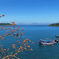 Tour Cù Lao Chàm - Thiên Đường Biển Đảo - Khởi Hàng Hàng Ngày