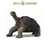 Mô hình thu nhỏ: Rùa Cạn - Pinta Island Tortoise, hiệu: CollectA, mã HS 9651470[88619] -  Chất liệu an toàn cho trẻ - Hàng chính hãng