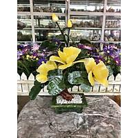 Cây Hoa Trà phong thủy đá bạch ngọc và đá thạch anh vàng - Cao 30 cm