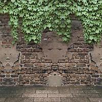 Tranh Dán Tường Hoa 3D TH9 (150 x 100 cm)