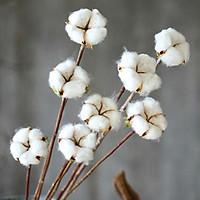 1 Branch Elegant Colored Cotton Flower Artificial Flower Home Wedding Decoration Photo Props