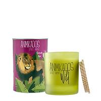 Nến thơm tinh dầu Ambientair Lion mùi Savannah Wood