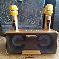 Loa Karaoke Bluetooth SDRD - SD301 Hàng Chính hãng - Tặng 2 Mic Không Dây Siêu Hay
