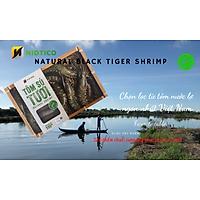 Tôm sú TƯƠI tự nhiên NIDTICO-Đông IQF (36-40con/kg)