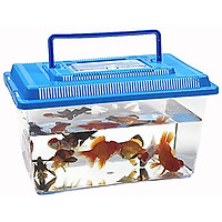 Portable Pet Breeding Box Transparent Tortoise Cylinder Goldfish Bowl Random Color