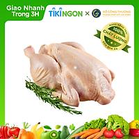 [Chỉ giao HCM] - Gà nguyên con (1 con 1.2kg - 1.6kg) - được bán bởi TikiNGON - Giao nhanh 3H