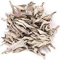 Xô thơm trắng white sage nguyên cành lá thanh tẩy nhà cuawr