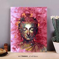 Tranh sơn dầu số hóa tự tô màu theo số về Phật - Mã TN0655 Phật hồng