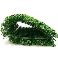 Combo 10 tấm cỏ xoong trang trí tường