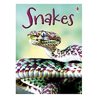 Usborne Snakes