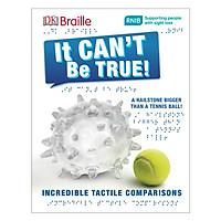 DK Braille It Can't Be True