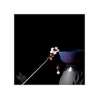 Trâm cổ trang hoa trắng sakura nhị đỏ cài tóc nữ phong cách cổ đại cosplay tặng thẻ Vcone