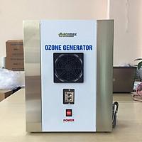 Máy tạo khí ozone diệt khuẩn khử độc Ecomax 1g/h ECO-1 – Hàng chính hãng