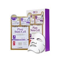 Hộp 10 mặt nạ chống lão hóa - tái tạo - trẻ hóa - mờ thâm nám Rainbow L'affair Plant Stem Cell 280ml