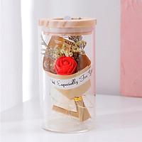 Bình thủy tinh hoa khô kèm HOA HỒNG có đèn phát sáng, lọ ước nguyện - quà tặng ý nghĩa