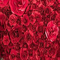 Phông 3D chụp hình cưới, ảnh nghệ thuật độc đáo – mã W087