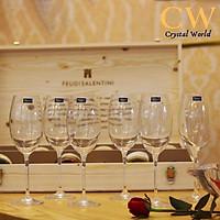 Bộ Ly Rượu Vang Pha Lê Tiệp Crystalite Bohemia Fulica Cao Cấp Đủ Dung Tích