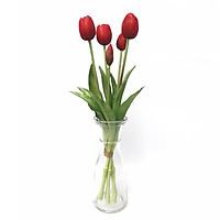Combo 5 cành Tulip  cao su non cao cấp trang trí nhà cửa