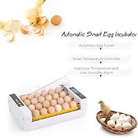 Máy Ấp Trứng Thông Minh Điều Chỉnh Được Nhiệt Độ (24 Ô Đựng Trứng)