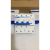 Aptomat chống giật NXBLE -125 3P+N 100A